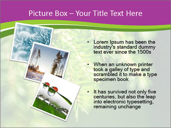 0000076611 PowerPoint Templates - Slide 17