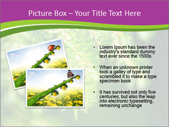 0000076611 PowerPoint Templates - Slide 20
