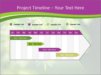 0000076611 PowerPoint Templates - Slide 25