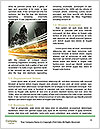 0000076616 Word Template - Page 4
