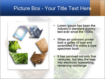 0000076618 PowerPoint Template - Slide 13