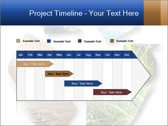 0000076618 PowerPoint Template - Slide 25