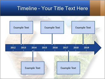 0000076618 PowerPoint Template - Slide 28