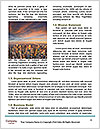 0000076622 Word Templates - Page 4