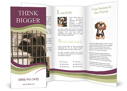 0000076631 Brochure Template