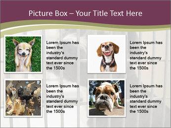 0000076631 PowerPoint Templates - Slide 14