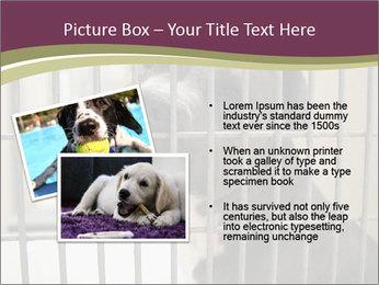 0000076631 PowerPoint Templates - Slide 20