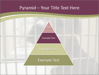 0000076631 PowerPoint Templates - Slide 30