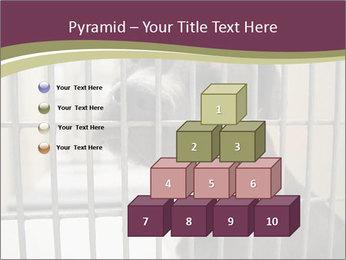 0000076631 PowerPoint Templates - Slide 31
