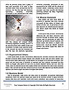 0000076639 Word Template - Page 4