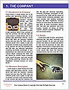 0000076641 Word Templates - Page 3
