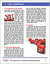 0000076643 Word Template - Page 3