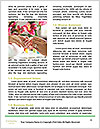 0000076645 Word Templates - Page 4