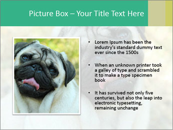 0000076658 PowerPoint Template - Slide 13