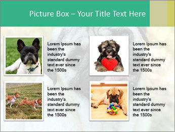 0000076658 PowerPoint Template - Slide 14