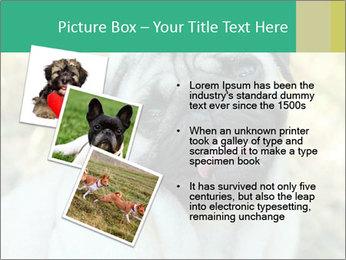 0000076658 PowerPoint Template - Slide 17