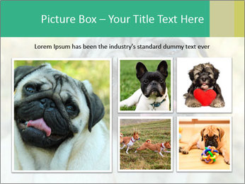 0000076658 PowerPoint Template - Slide 19