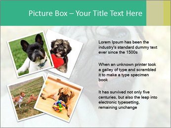 0000076658 PowerPoint Template - Slide 23