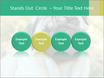 0000076658 PowerPoint Template - Slide 76