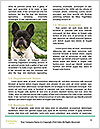 0000076658 Word Template - Page 4