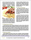 0000076659 Word Templates - Page 4