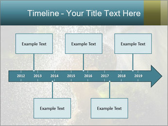 0000076662 PowerPoint Template - Slide 28