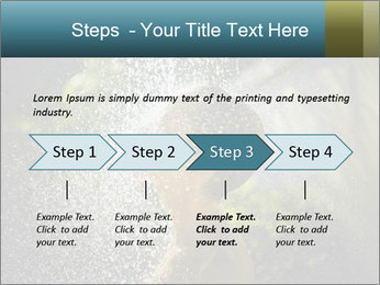 0000076662 PowerPoint Template - Slide 4