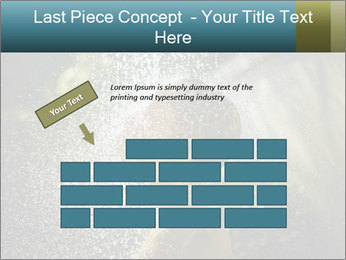 0000076662 PowerPoint Template - Slide 46