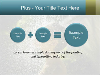 0000076662 PowerPoint Template - Slide 75