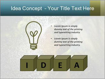 0000076662 PowerPoint Template - Slide 80