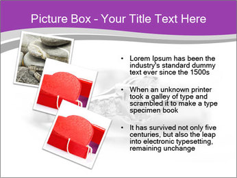 0000076663 PowerPoint Templates - Slide 17