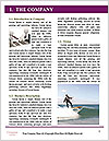 0000076666 Word Template - Page 3