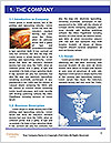 0000076670 Word Template - Page 3