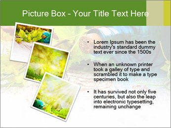 0000076677 PowerPoint Template - Slide 17