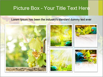 0000076677 PowerPoint Template - Slide 19