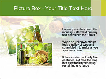 0000076677 PowerPoint Template - Slide 20