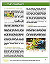 0000076677 Word Template - Page 3