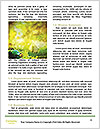 0000076677 Word Templates - Page 4