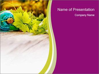 0000076678 PowerPoint Template - Slide 1