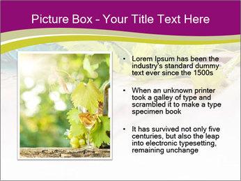 0000076678 PowerPoint Template - Slide 13