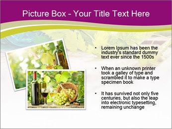 0000076678 PowerPoint Template - Slide 20
