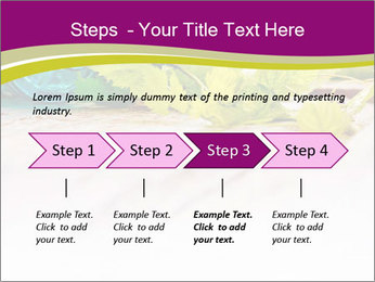0000076678 PowerPoint Template - Slide 4