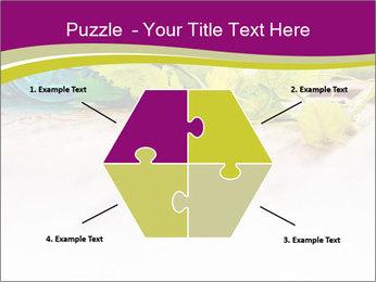 0000076678 PowerPoint Template - Slide 40
