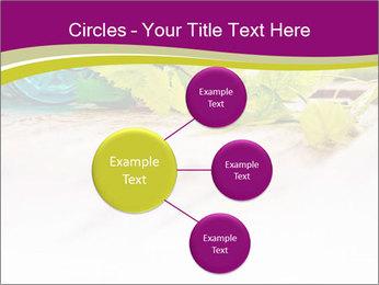 0000076678 PowerPoint Template - Slide 79