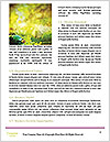 0000076678 Word Templates - Page 4