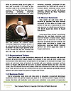 0000076688 Word Template - Page 4