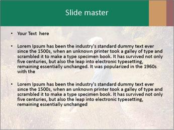 0000076708 PowerPoint Template - Slide 2