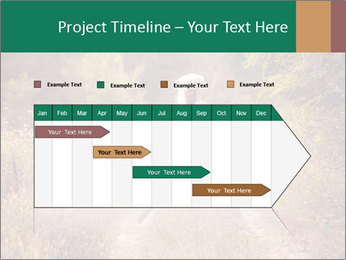 0000076708 PowerPoint Template - Slide 25