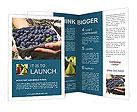 0000076713 Brochure Templates
