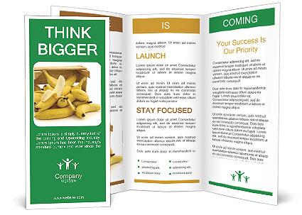 0000076714 Brochure Templates